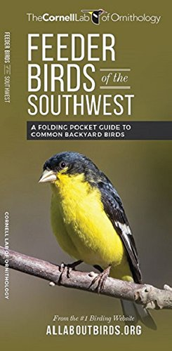 Feeder Birds of the Southwest: A Folding Pocket Guide to Common Backyard Birds (All About Birds Pocket Guide Series)