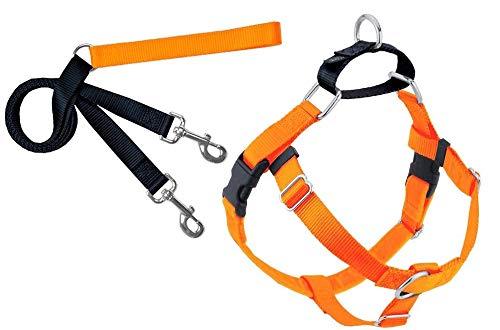 Hounds Orange (2 Hounds Design Freedom No-Pull Dog Harness Training Package, Large, Neon Orange)
