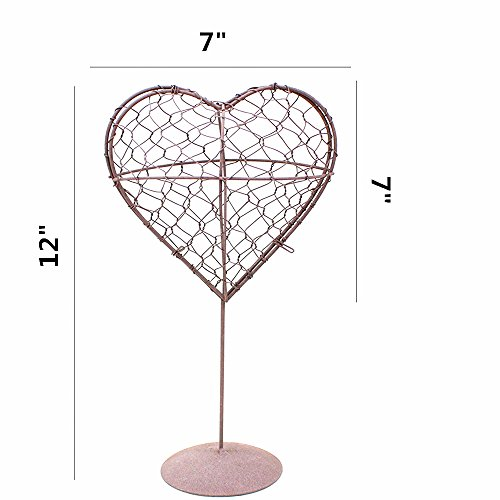 Danmu Rustic Iron Wire Wreath Frame Succulent Pot Iron Hanging Planter Plant Holder (Plants are Not Included) (Style 6 Standing Heart Shape)