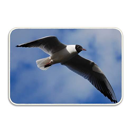 Niaocpwy Welcome Doormat Seagull Entrance Floor Mat Rug Indoor/Front Door/Bathroom/Kitchen
