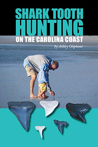 Shark Tooth Hunting on the Carolina Coast ()