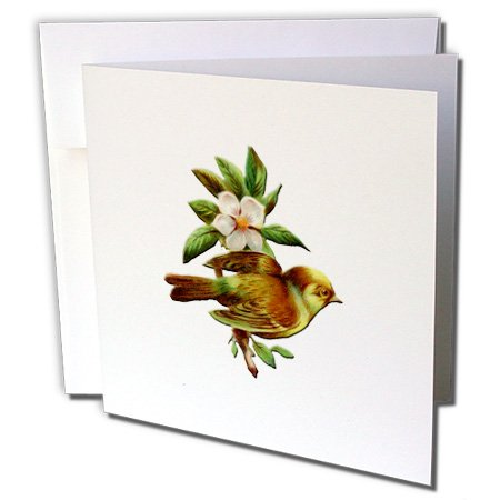 BLN Vintage Bird Illustrations Collection - Pretty Little Bird Perched on Branch of a White Flowering Tree - 12 Greeting Cards with envelopes (gc_171361_2)