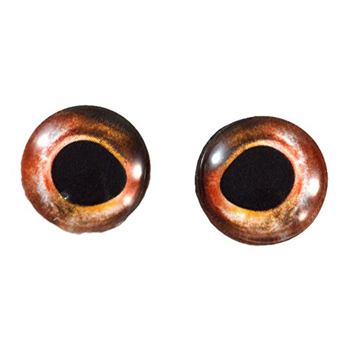 16mm Bass Fish Glass Eyes Taxidermy Irises in Red Art Doll Sculptures or Jewelry Making Crafts