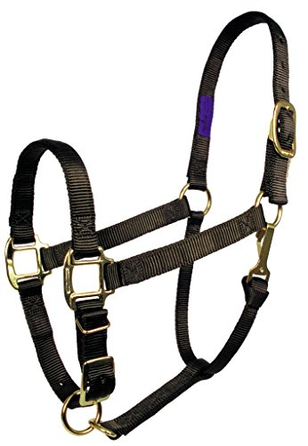 Fabtron Comfort Fit Adjustable Nylon Halter 3/4