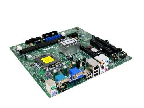 Amazon.com: PNY GeForce 7150 mGPU Micro ATX Motherboard ...