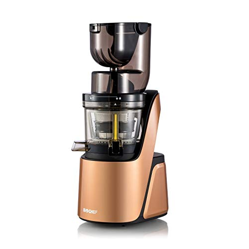 BioChef Quantum Whole Slow Juicer – With powerful 300 W motor, wide chute (3.15 x 3.15 inch) & many accessories in bronze