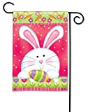 Amazon Price History for:Hippity Hop Easter Garden Flag