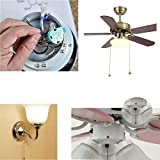 Ceiling Fan Switch Zing Ear Pull Chain Switch