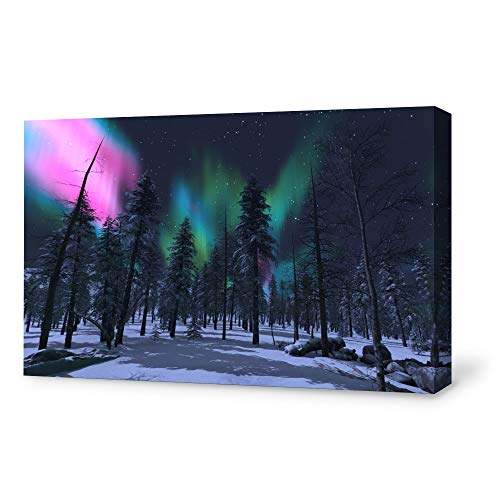SIGNFORD Canvas Wall Art Canvas Aurora Painting Wall Poster Decor for Living Room Framed Home Decorations - 32x48 inches