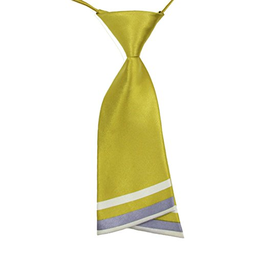 HANERDUN Womens Bowtie Ladies Pre Tied Silk Necktie Costume Accessory Gift Idea for $<!--$3.49-->