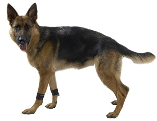 Kruuse Rehab Weight Cuffs for Dogs, - Cuff Dog