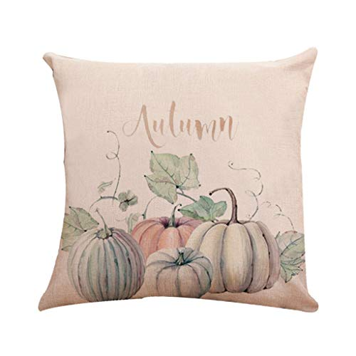 TGDY Holiday Halloween Pillow Cover,Spirit of Halloween Thriller Throw Pillow Covers 100% Cotton Linen Zipper Closure, Cushion Couch Pillow Covers,D,18