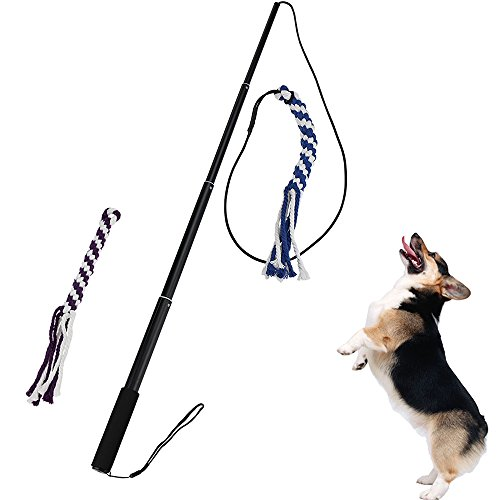 Interactive Dog Tug Toy, ANG Extendable Dog Teaser Wand with 2 Cotton Rope Dog Toy Outdoor Playing for Pulling, Chasing, Chewing, Teasing, Training(Large)
