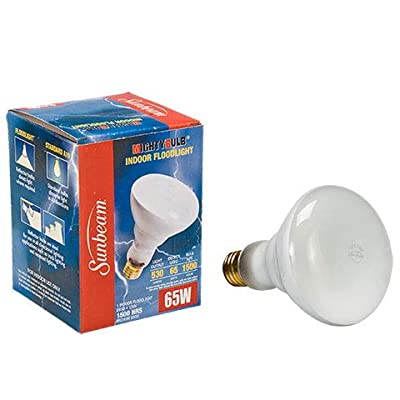 Sunbeam 65-Watt BR30 Indoor Flood Light Bulb, 2-Pack