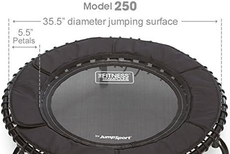 JumpSport 250 In Home Cardio Fitness Rebounder - Mini trampolín de rebote silencioso y duradero con puenting premium, DVD de entrenamiento y acceso en línea a entrenamientos de video: seguro y estable