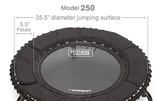 JumpSport 250 | Fitness Trampoline, In-Home Rebounder | Home Cardio Exercise | Safely Cushioned Bounce | Long Lasting Premium Bungees | Top Rated for Quality & Durability | Music Workout Video Incl. by JumpSport (Image #2)