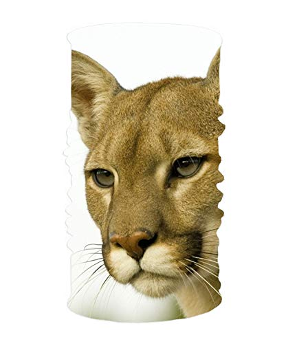 Magic Scarf Animal Cougar Cats Headband, Comfy Face Bandana Mask Breathable Headwrap -