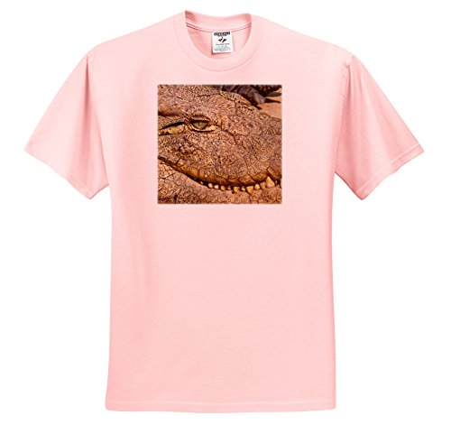 danita-delimont-crocodile-livingstone-zambia-extreme-close-up-of-a-crocodile-face-t-shirts-adult-lig