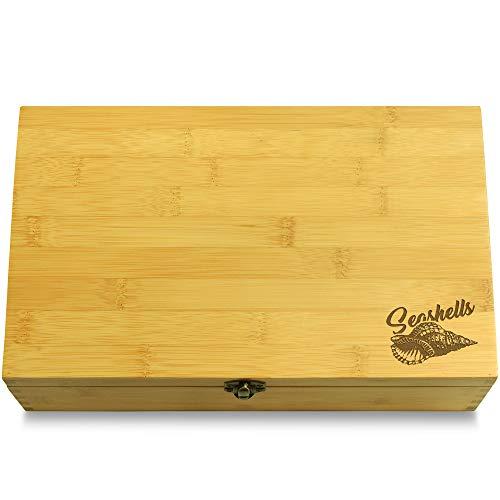 Cookbook People Conch Shell Seaside Multikeep Box - Keepsake Sustainable Bamboo Adjustable ()