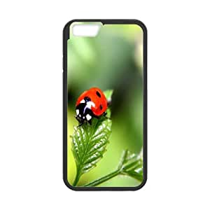 iPhone 6,6S Plus 5.5 Inch Phone Case With Leaves U8A52573