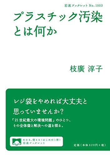 プラスチック汚染とは何か (岩波ブックレット NO. 1003)