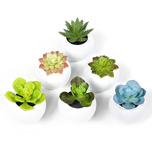 EPCTEK Fake Succulents Potted Faux Succulents 6pcs Fake Succulent Plants Artificial Succulent Plants for Home Coffee Table Decoration in Green by EPCTEK