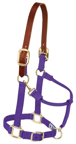Weaver Leather Nylon Adjustable Breakaway Horse Halter, Average, ()