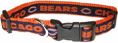 chicago bears cheerleader - 5