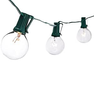 Divine 25 Clear G40 Bulbs UL Listed Globe String Lights, 25-Feet, Green