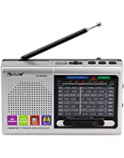 Multi-Function Wireless Radio FM/AM/SW Multi-Band Radio Portable Bluetooth Speaker MP3 Player can be Operated by Rechargeable Lithium Battery/3 AA Batteries Support TF Card/U Disk(Silver)