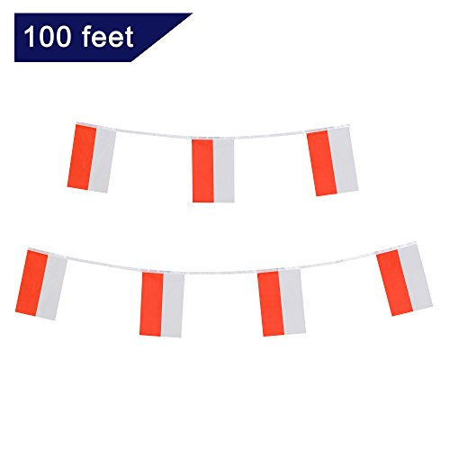 Poland Flag,TSMD 100 Feet Polish Flag National Country World Pennant Flags Banner String,International Party Decorations For Olympics,Grand Opening,Bar,School Sports Events,Festival Celebration ()