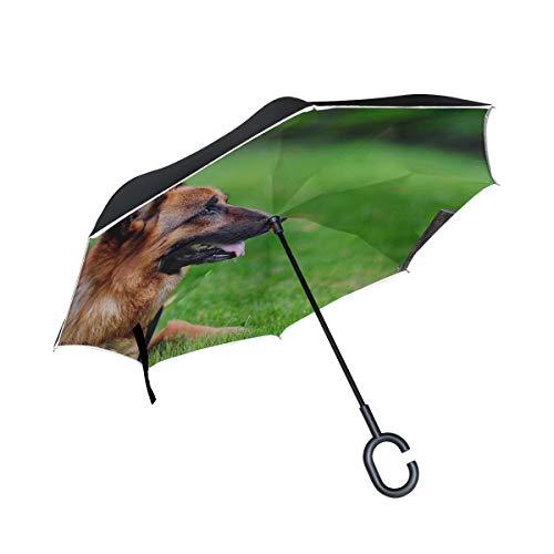(Rh Studio Inverted Umbrella Rain Sun Car Reversible Umbrella Dog Cat Grass German Shepherd Large Double Layer Outdoor Upside Down Umbrella with Women with Uv Protection C-Shaped Handle)