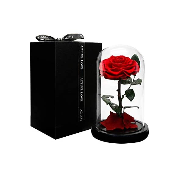Dakotan Forever Rose -Eternal Rose with Real Fallen Petals – in Luxury Glass Dome with Wooden Base and Elegant Gift Box – Gift for Valentine's Day Mother's Day Wedding Anniversary Birthday (RED)