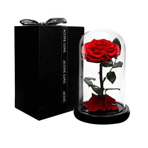 Dome Rose - Dakotan Forever Rose -Eternal Rose with Real Fallen Petals - in Luxury Glass Dome with Wooden Base and Elegant Gift Box - Gift for Valentine's Day Mother's Day Wedding Anniversary Birthday (RED)