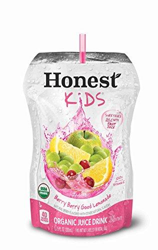 Kids Organic Lemonade 6 75 Ounce Pouches product image
