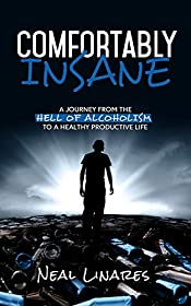 Comfortably Insane: A Journey From The Hell Of Alcoholism To A Healthy Productive Life