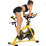 Hurbo Pro Indoor Belt Drive Cycling Bike Aerobic Cardio Home Gym Fitness Training Exercise Bike with 40 LBS Flywheel (Yellow) Review