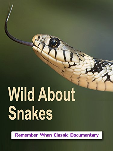 Wild About - Snakes