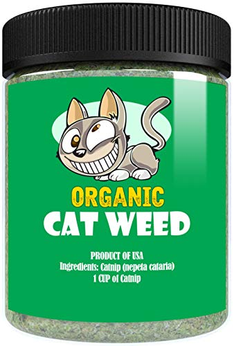 Cat Weed Organic Catnip has Maximum Potency Premium Blend Nip That Your Cats to Go Crazy Over (1 Cup)