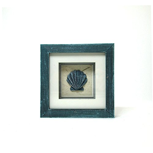 Sea Life Collection - Decorative Clam Shell Blue Shadow Box by WonderMolly