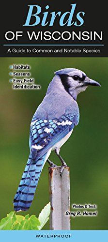 Birds of Wisconsin: A Guide to Common and Notable Species