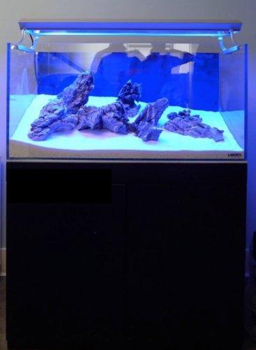 Landen 90P 59 4 Gallon Rimless Low Iron Aquarium Tank, 35 43