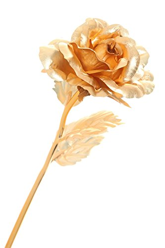 DuraRose® 24k Gold Foil Rose With 'LOVE CARD' - Best Gift For Loves Ones. Ideal For Valentine's Day, Mother's Day, Anniversary, Birthday