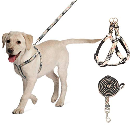BINGPET No Pull Dog Harness and Leash - Step in Puppy Harness with Leash Set for Medium Dogs (Plaid)