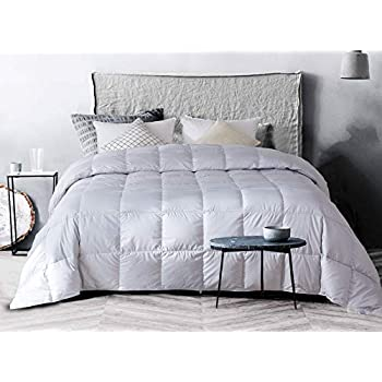 confibona Lightweight 100% Natural White Goose Down Comforter Blanket for Summer Warm Weather,Queen Size,750+ Fill Power, Machine Washable,Super Soft Cotton Shell with No Sound,Light Gray