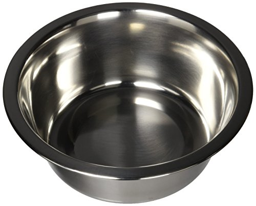 QT Dog Standard Stainless Steel Food Bowl, 1 Quart ()