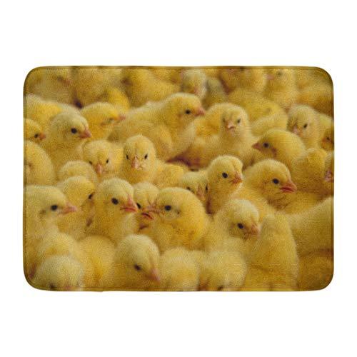 Emvency Doormats Bath Rugs Outdoor/Indoor Door Mat Yellow Baby Lot of Little Chickens in Farm Poultry Hatchery Hen Bathroom Decor Rug Bath Mat 16