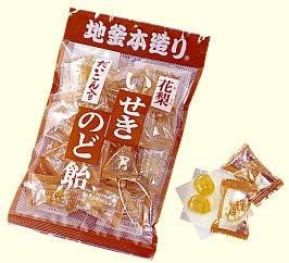 井関食品 120gだいこん入花梨 いせきのど飴 10袋×2
