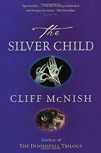 The Silver Child ebook