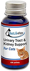 Sweepstakes: BestLife4Pets Urinary Tract and Kidney…
